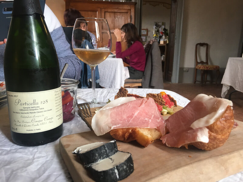 about wines in emilia