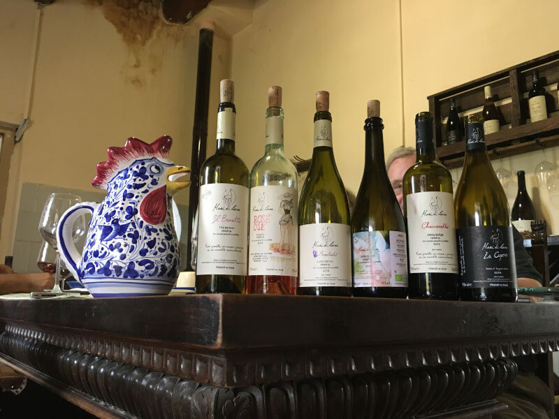 about wines in umbria