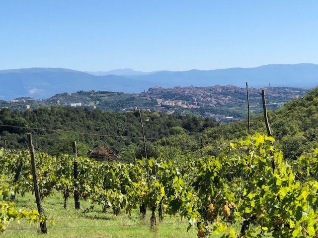 wine tours umbria
